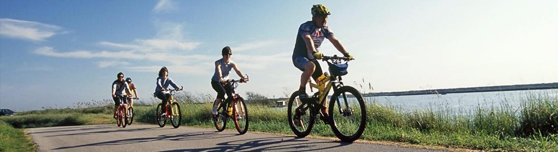 Il piacere della bicicletta